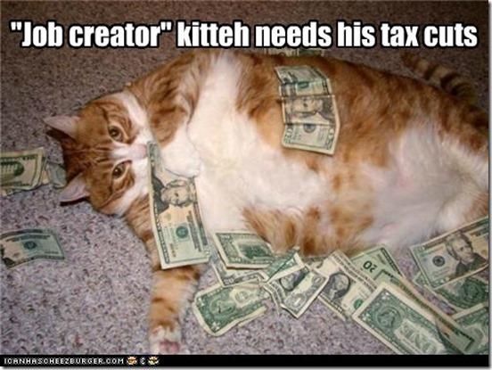 austerity cat returns